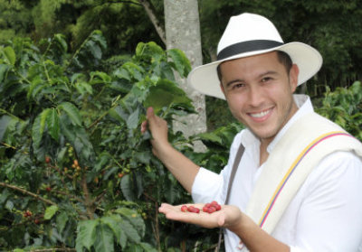 farmer showing coffee beans